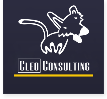 Cleo Consulting